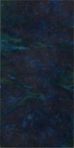 『現象』2016 Ⅱ-B-3 30×15×3.1cm